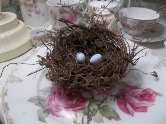 (NestB) bird nest , eggs , cottage & cabin decor , rose cottage style , rustic ,county decor , weathered , feathered friend style art