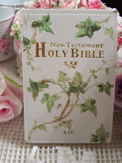 (C Bible)  Handpainted Pocket New Testament Bible