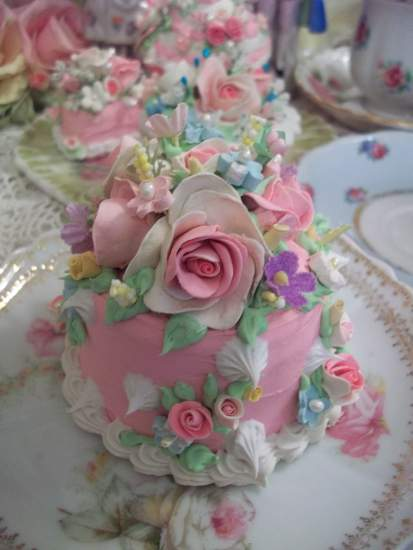 (SalsaRosa) Fake Cake