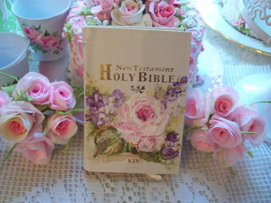 (BibleI) Handpainted Pocket New Testament Bible